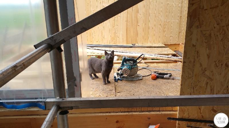 Kolejny etap budowy domków- niebawem będą gotowe :)