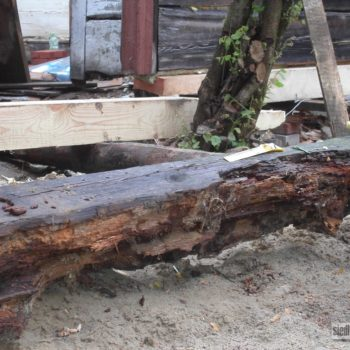 Poszukiwania wymarzonego drewnianego domu