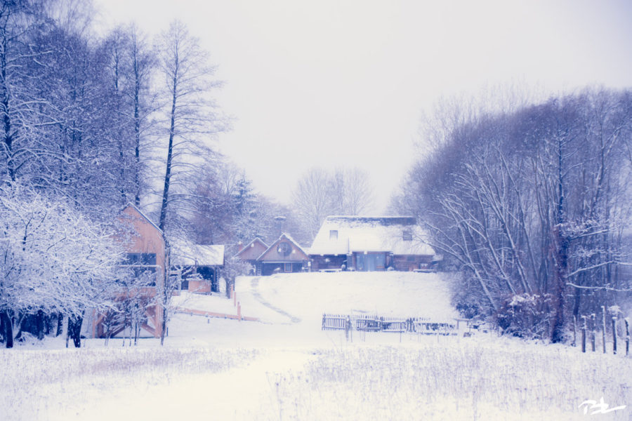 Zima w Siedlisku