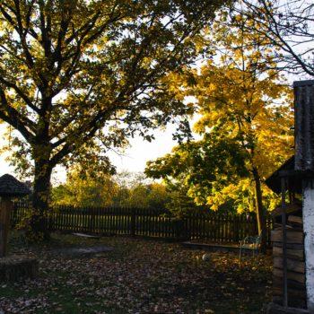 Jesień w Siedlisku